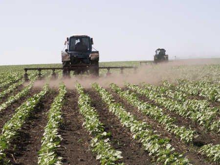 Медведев предложил субсидировать ставки по кредитам для сельхозпроизводителей